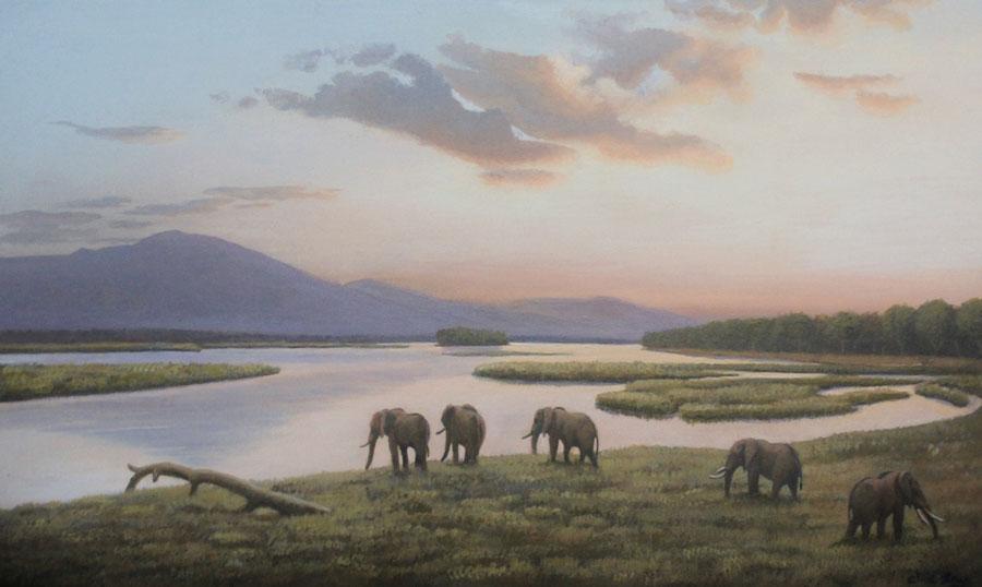 Sunrise on the Zambezi