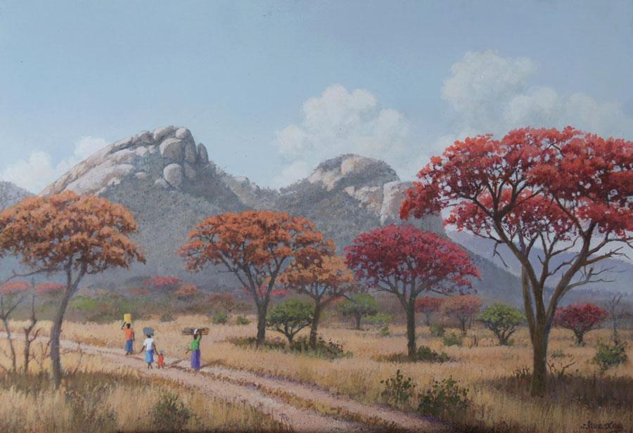 TWIN GOMOS – MSASA TREES